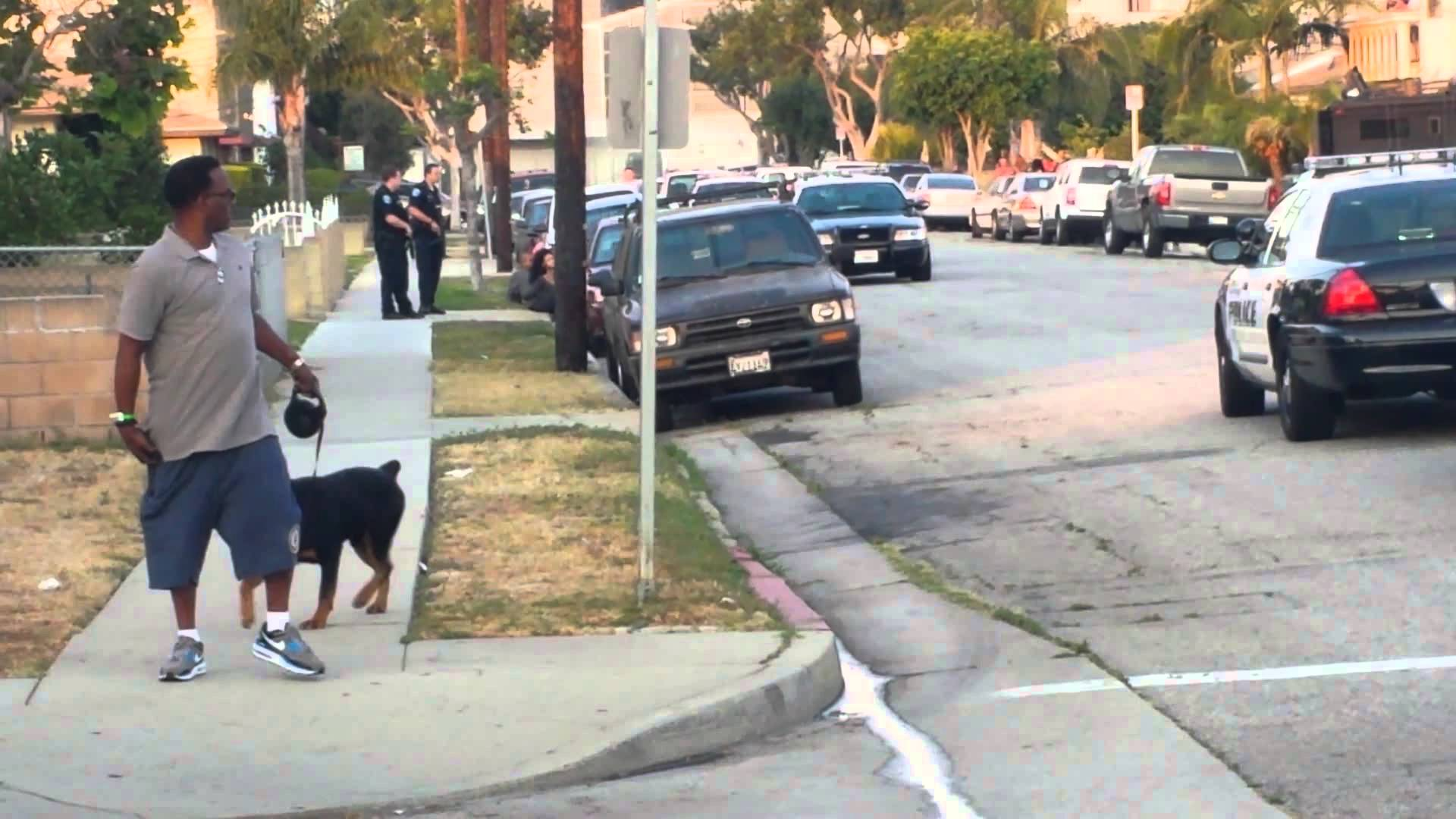 Petitions about the Hawthorne CA police shooting of Max the dog