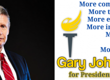 gary johnson check him out borders horizontal
